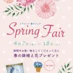 スプリングフェア「春のお花プレゼント」
